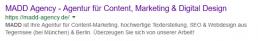 Screenshot von Metadaten bei Google